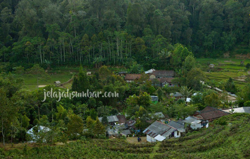 Citalahab Sentral, Kampung Kecil di Jantung Gunung Halimun